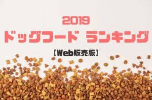 【2019年最新版】Web販売のおすすめドッグフードランキング10